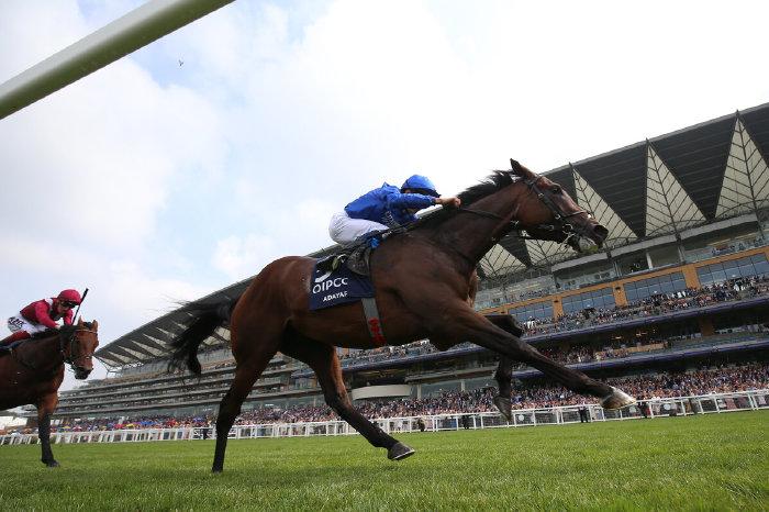 Adayar wins King George