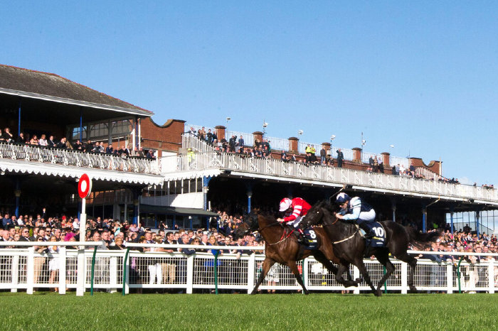 July 19 Racing Tips: Shelir expected to earn first win at Ayr