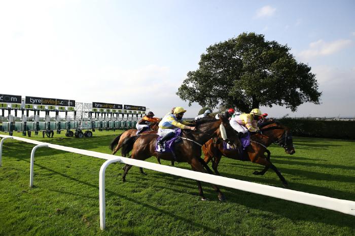 beverley-lingfield-warwick-betting-tips-odds-balding-gosden
