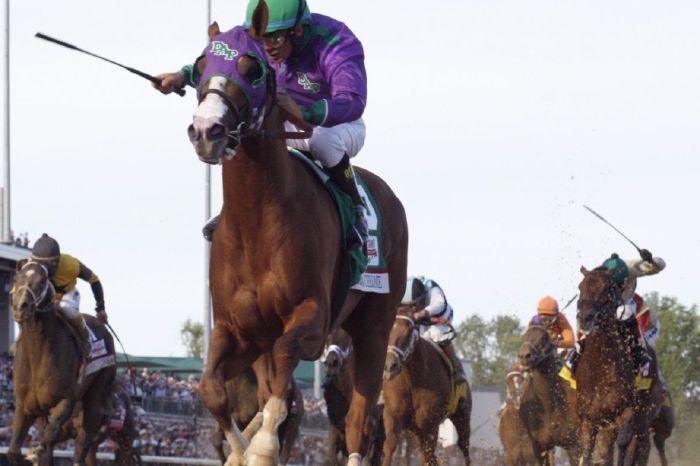 California Chrome just missed out on the Triple Crown at the Belmont Stakes in 2014