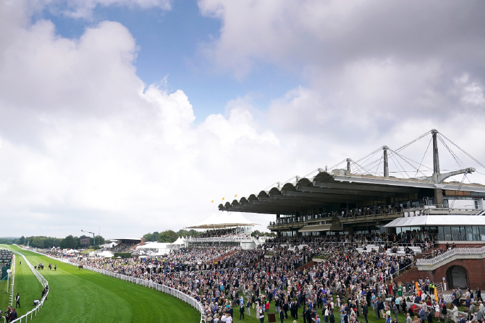 Goodwood sees most of the racing action this Sunday