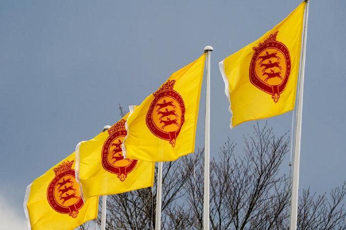 Goodwood flags