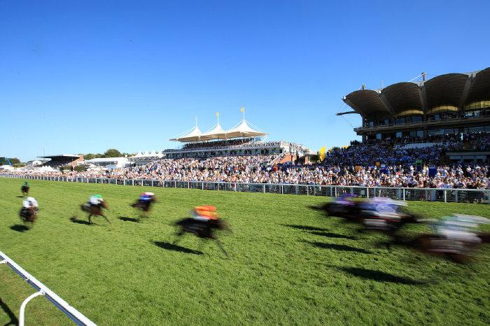 Goodwood racecourse