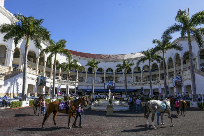 Gulfstream Park hosted The Fountain of Youth Stakes on Saturday