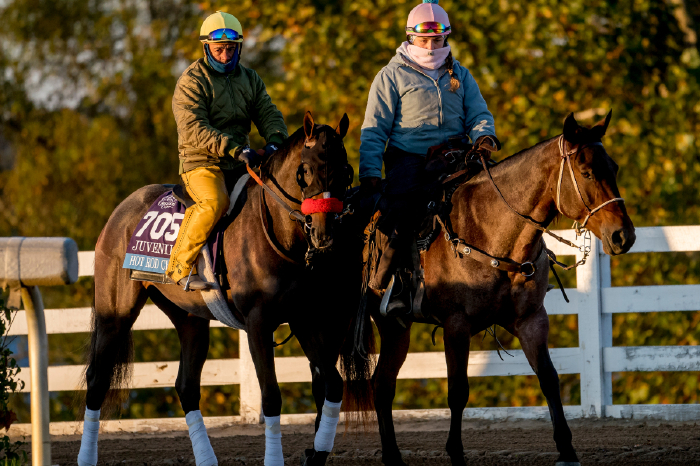 It's last chance Charlie for Hot Rod Charlie at the Louisiana Derby