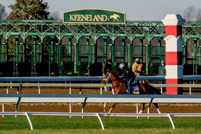 The Lexington Stakes will take place at Keeneland on Saturday