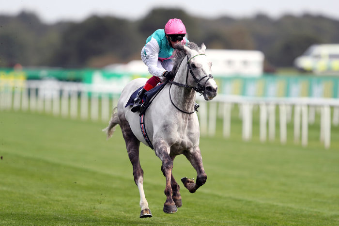 Logician and Frankie Dettori