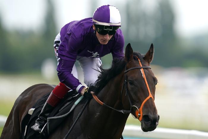 mojo-star-arc-hannon-champions-day-horse-racing