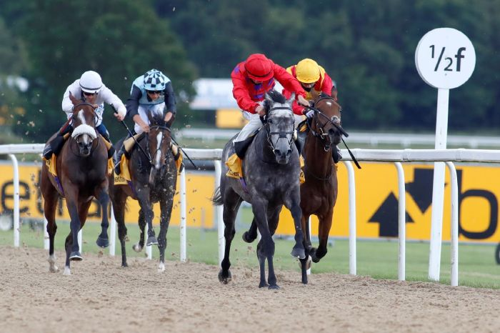 Luke Elder's betting tips: Three bets for Lingfield Park and Newcastle