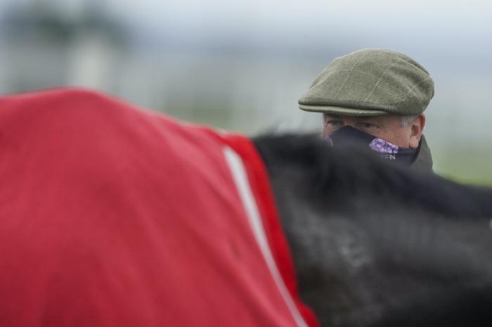 paul-nicholls-warwick-harry-cobden-betting-odds-tips