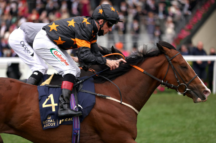 Rohaan wins Wokingham Stakes at Ascot