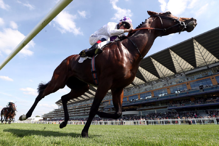 Poetic Flare ridden by jockey Kevin Manning on their way to winning the St James's Palace Stakes.