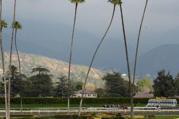 The San Felipe Stakes took place at Santa Anita Park on Saturday