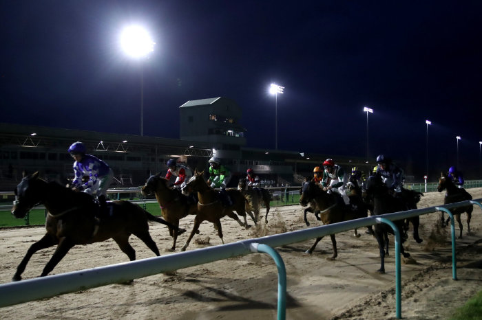 Southwell all-weather track at night