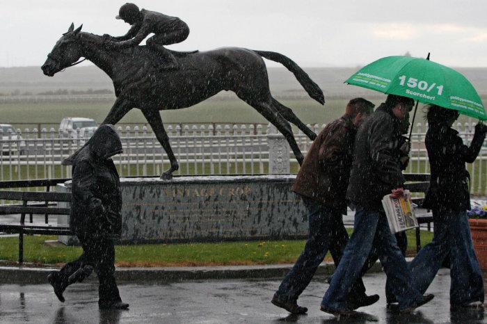 The Curragh in the rain