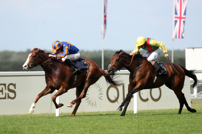 Three of today's selections are in action at Ascot