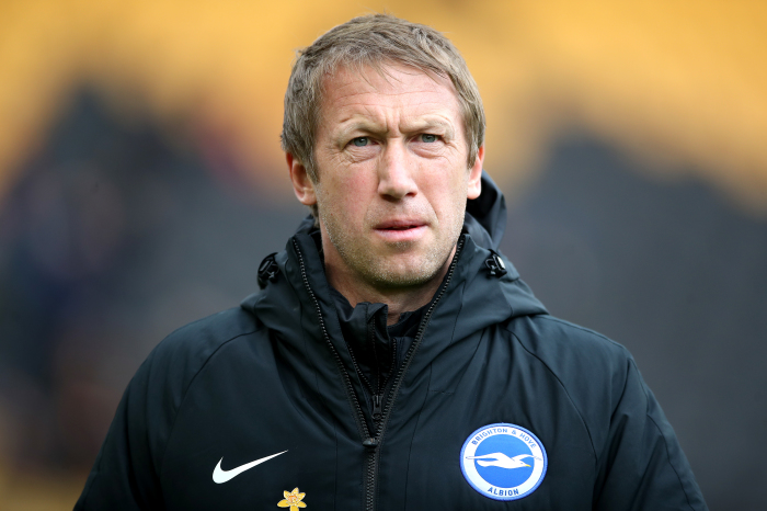 Graham Potter can lead Brighton to safety