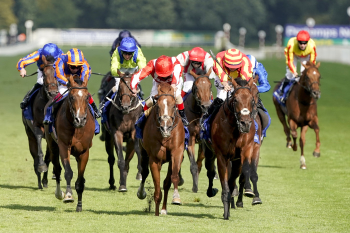 Doncaster racecourse is the scene for Saturday's St Leger
