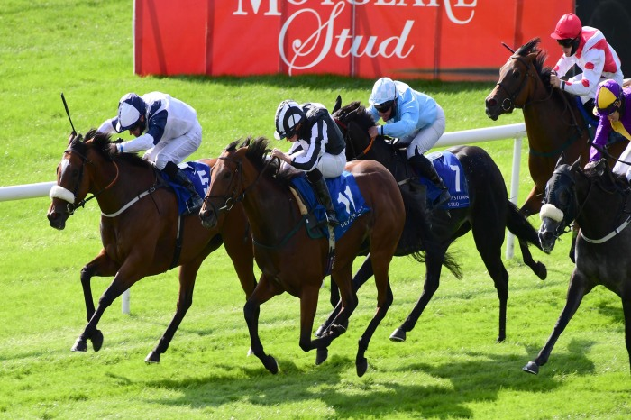 Ravenscraig Castle can make it two wins from two at Ayr