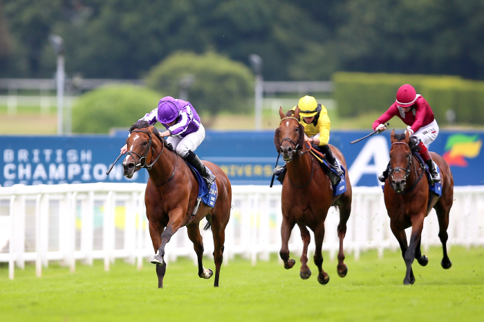 St Mark's Basilica is likely to run in the Irish Champion Stakes