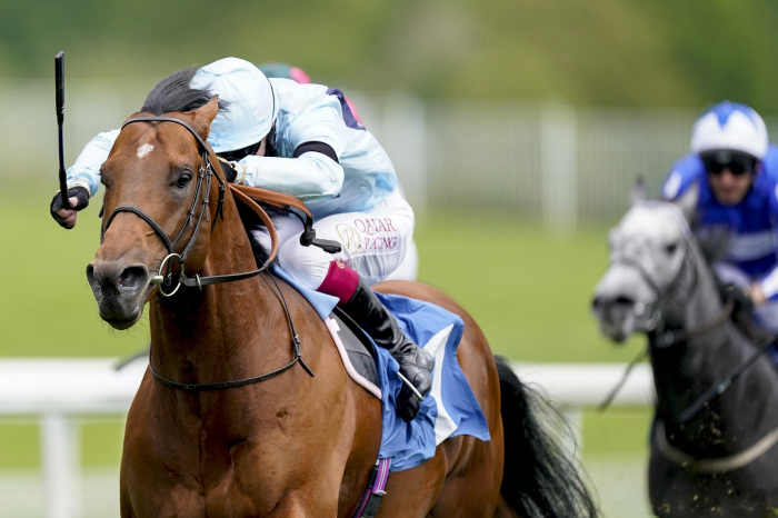 Starman is one of the favourites for Saturday's Betfair Sprint Cup