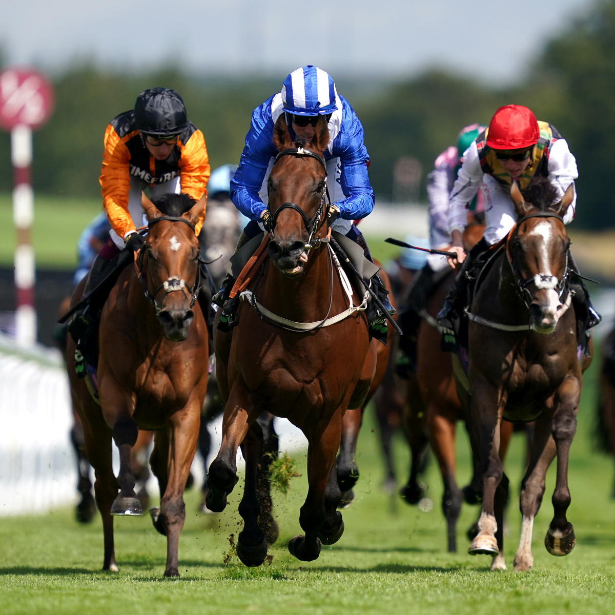 Saturday August 28 Tips: Best bets for the live ITV races