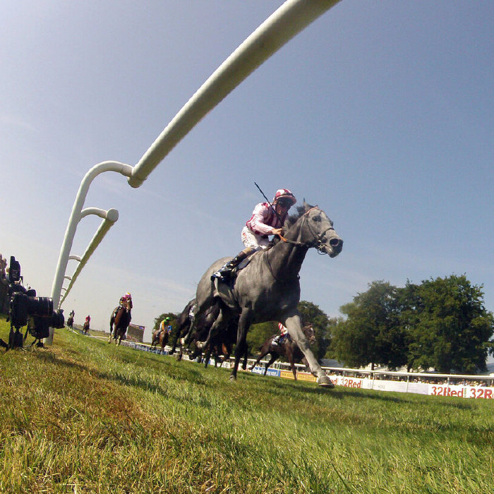Today's selections are in action on Newmarket's July Course