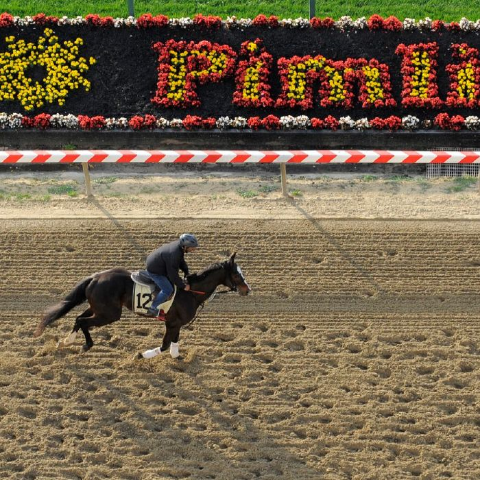 The Preakness Stakes will take place at Pimlico Race Course on May 15