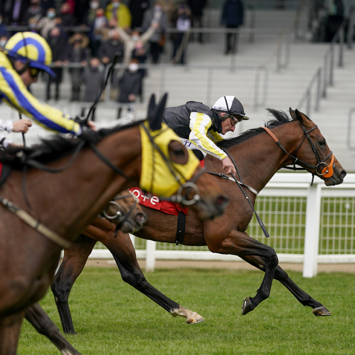 river-nymph-ascot-betting-tips-odds-clive cox