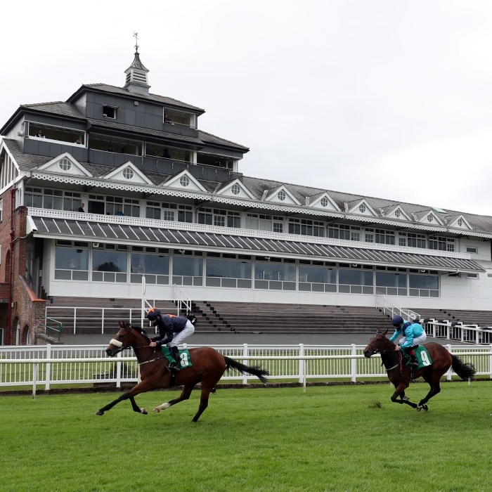 Victoria Grove is one to watch in the 1.30 at Thirsk on Friday, August 27